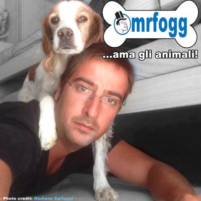"""Immagine di 20 """"verità"""" che gli amanti dei cani devono ricordare SEMPRE!"""